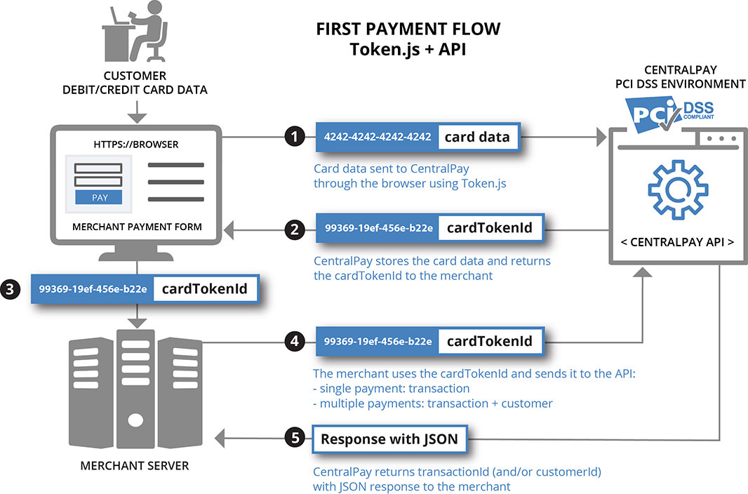 Single payment flow